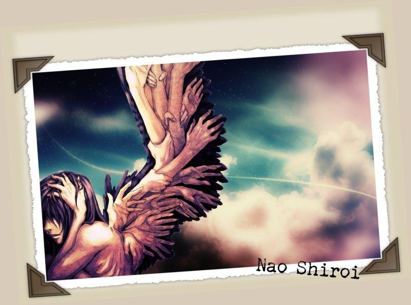 Cabinet de Curiosités~ Angel11
