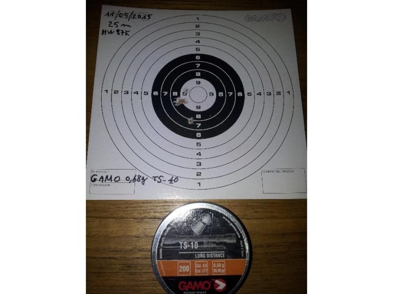 Carabine neuve neuve Hw97K 16 joules cal 4,5 Puissance faible ? - Page 2 Gamo_t10
