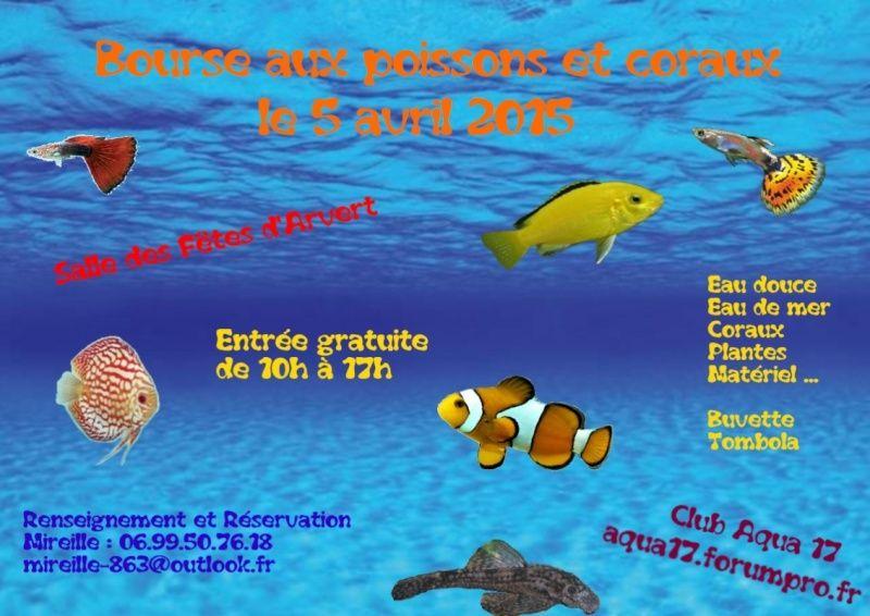 Bourse d'arvert (17) Bourse10