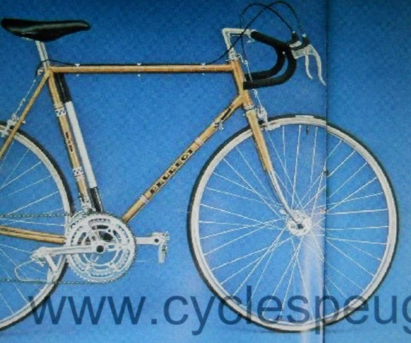 peugeot p10 de 1975 Dscn5814