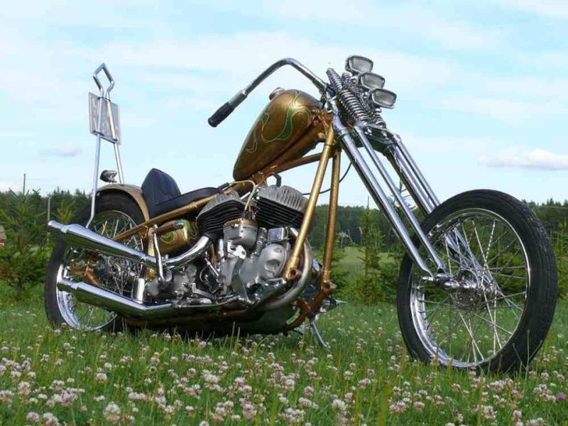 Choppers  galerie - Page 4 11164810