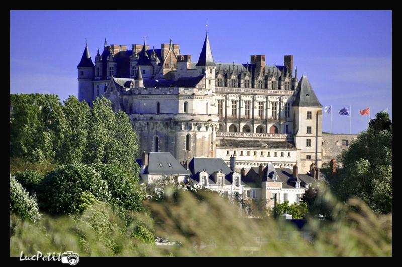 La  Loire, paysage, faune - Page 5 Chatea10
