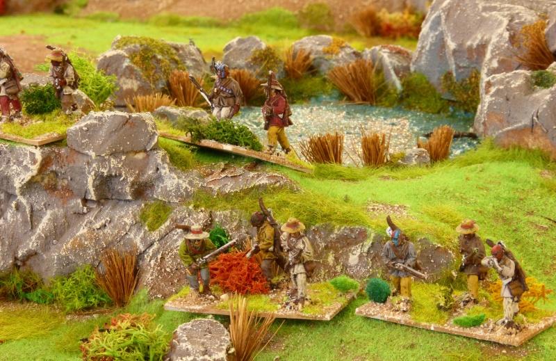 [AWI] La bataille de Brandywine P1060458