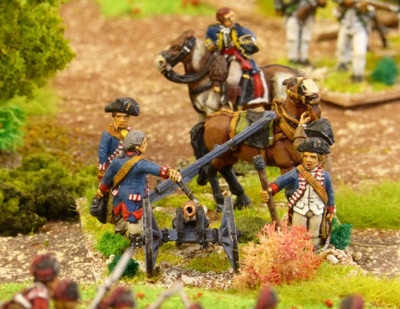 [AWI] La bataille de Brandywine P1060460