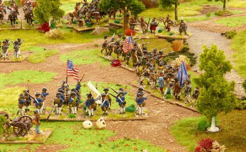 [AWI] La bataille de Brandywine P1060550