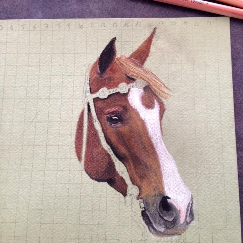 \FINI A FERMER SVP/ Portrait d'un cheval aux pastels Img_0210