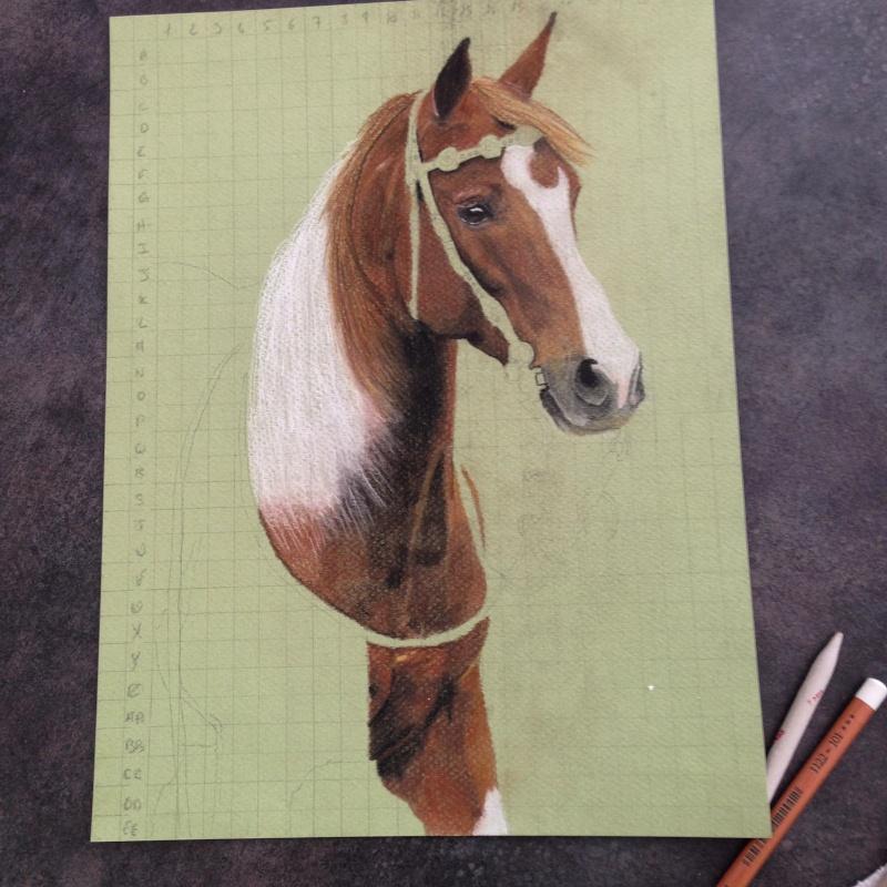 \FINI A FERMER SVP/ Portrait d'un cheval aux pastels Img_0212