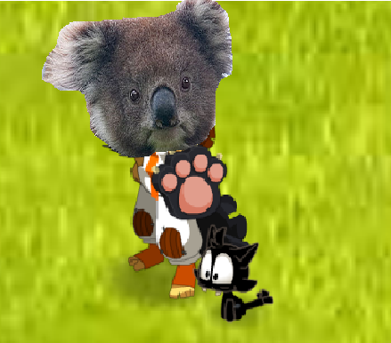 Recrutement de Soldat-Louis et Hey-nora Koala_10