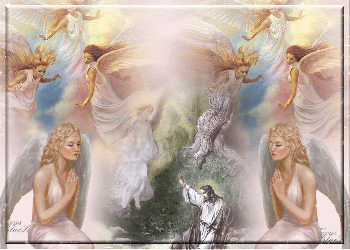 Как работать с Ангелами Aee88