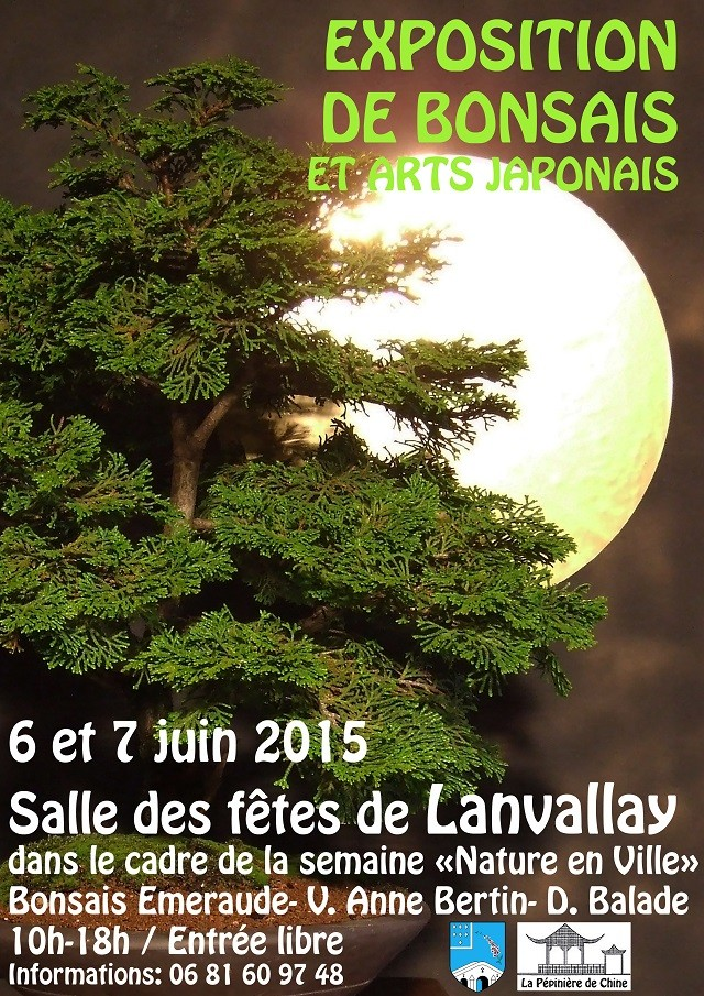 le club émeraude bonsaï  expose le 6 et 7 juin Base_a11