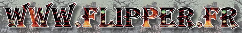 La fin de flippers-forum.net oui mais la naissance de www.flipper.fr - Page 4 Betalo10