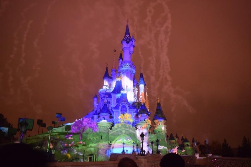 Photo du jour - Page 5 Disney17