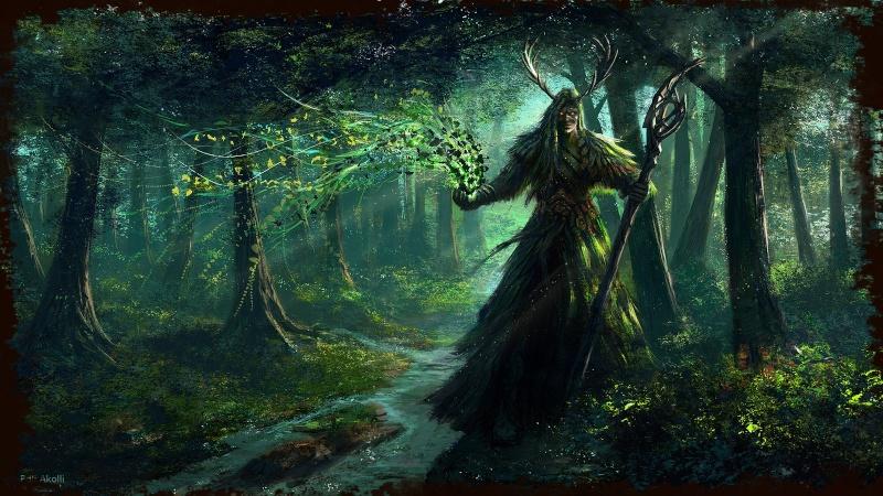 Le Druidisme Druid_12