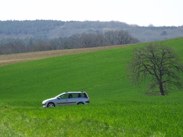 Nicolas4240  Peugeot 206 sw 2.0 hdi 90 xline clim - Page 2 Dscf2711