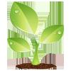 Event : รวมพลังลดโลกร้อน มาปลูกต้นไม้กันเถอะ..!! - Page 2 Plant-11