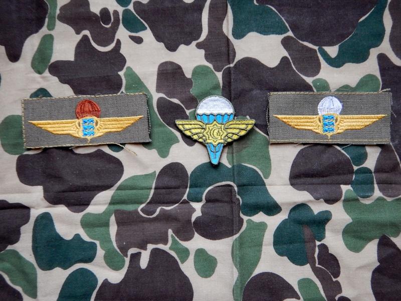 Ripcord's insignia collection - Page 2 Estoni26