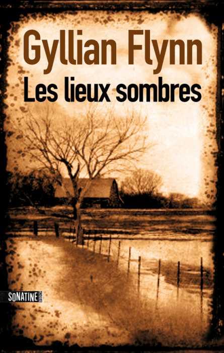 FLYNN Gillian - Les lieux sombres / Dark Places Lieux110