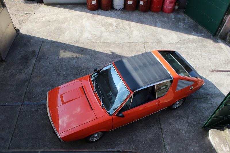 Nouvelle Orange dans la Famille Img_0426