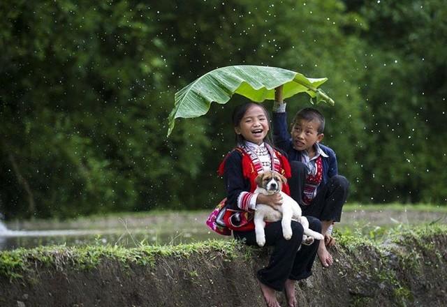 Belles images d'altruisme 10001010