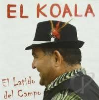 EL KOALA Untitl37