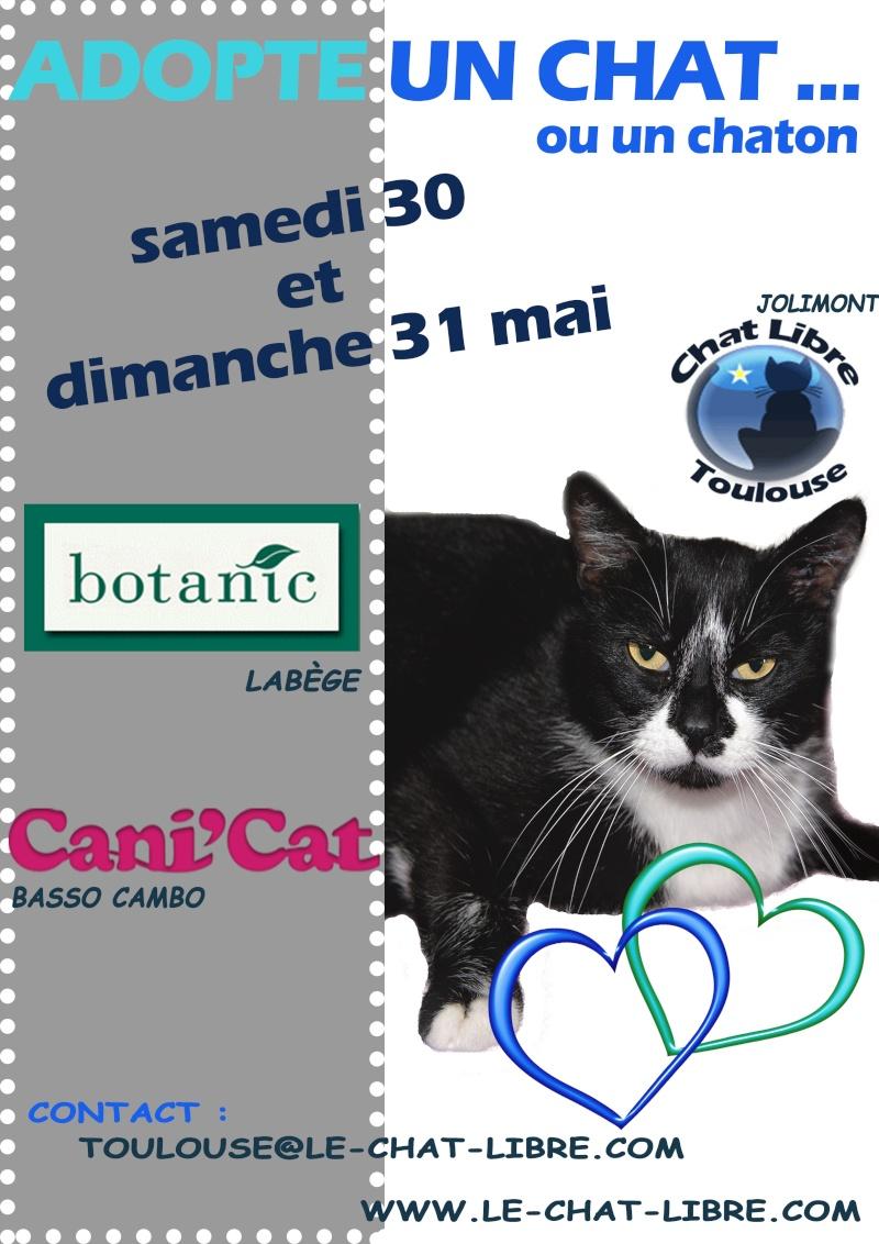 30 et 31 MAI 2015 - Canicat - botanic labège  30_et_10