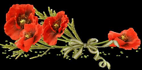 céline20* les hitoires des prophètes* (session 2) Fleur216