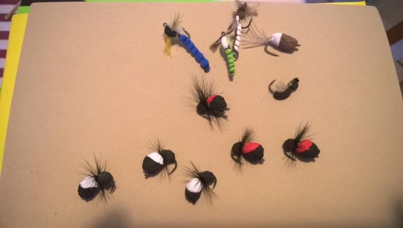 Zig Bug Wp_20113