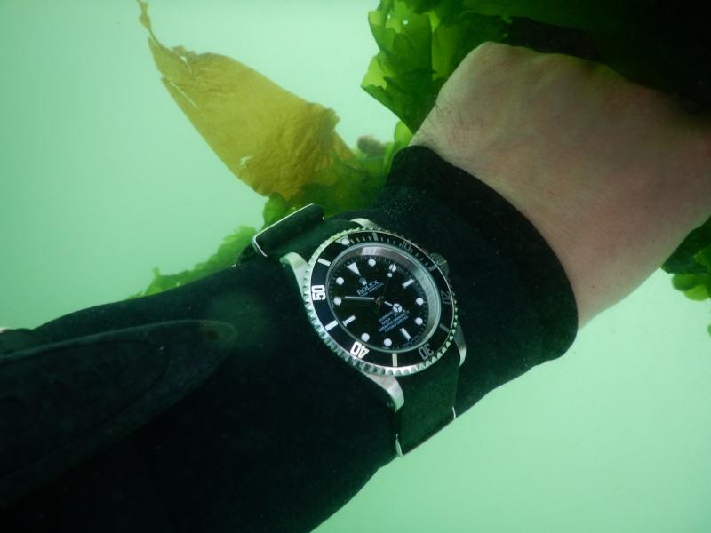 stowa - La montre de plongée du jour - tome 3 - Page 43 Dscn0010