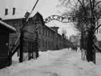 Ne jamais oublier...suite au journal d'Anne Frank Camp_210