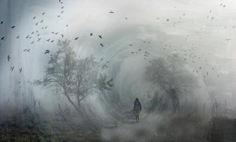Foncer dans le brouillard..(d'après l'image du mois) Sur_le10