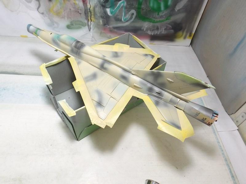 """Mikoyan-Gourevitch MiG-21 PF """"égyptien"""" au 1/48 Dscf1551"""