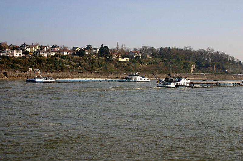 Kleiner Rheinbummel am 10.04.15 in Andernach und Mondorf 11d10