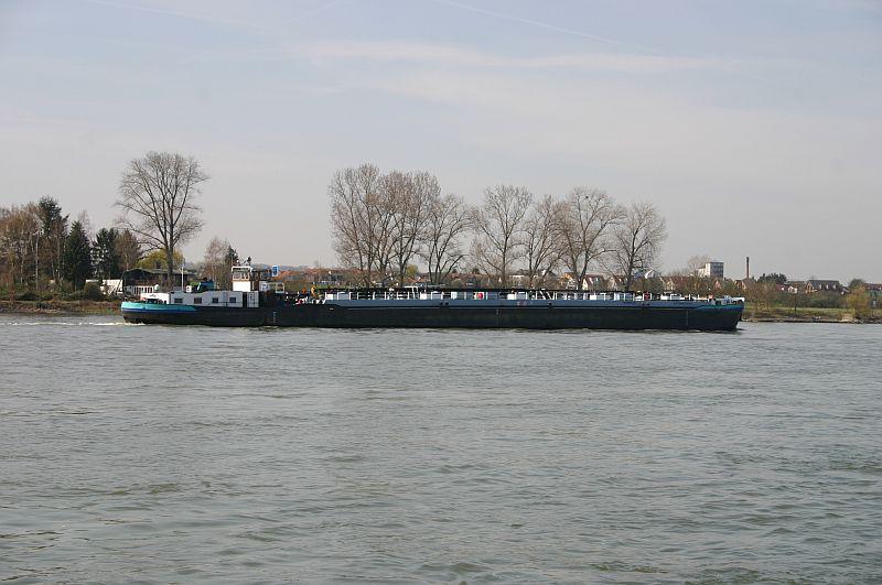 Kleiner Rheinbummel am 10.04.15 in Andernach und Mondorf 15a10