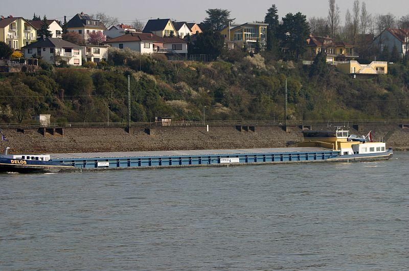 Kleiner Rheinbummel am 10.04.15 in Andernach und Mondorf 518