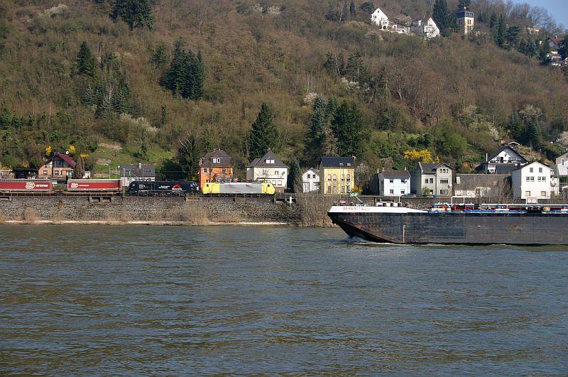 Kleiner Rheinbummel am 10.04.15 in Andernach und Mondorf 8a10