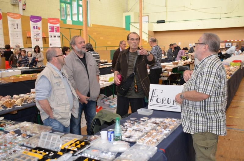 2015 Bourse de Rennes - 22 au 24 mai - Page 2 Dsc_9115