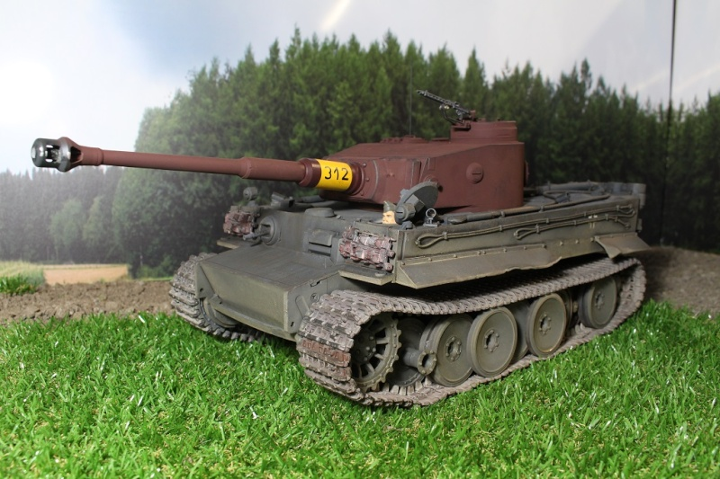 Another Tiger 1.... ????? Img_1138