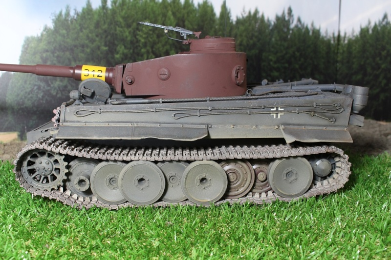 Another Tiger 1.... ????? Img_1139