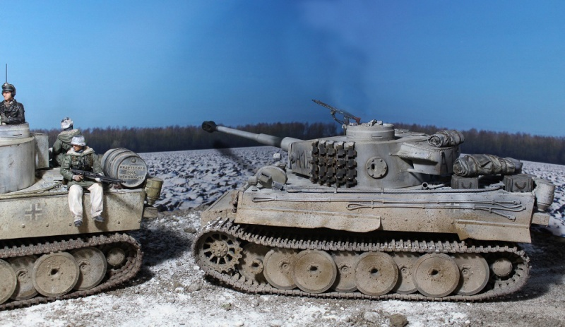 Another Tiger 1.... ????? Img_1237