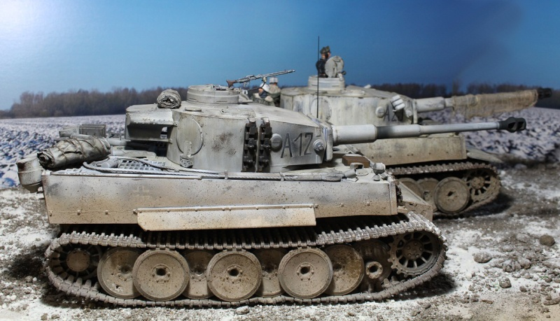 Another Tiger 1.... ????? Img_1238