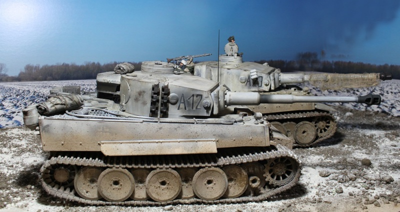 Another Tiger 1.... ????? Img_1239