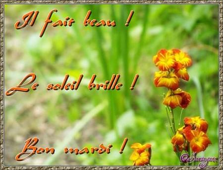 Bonjour bonsoir,...blabla Avril2015 - Page 3 Svj_9v10