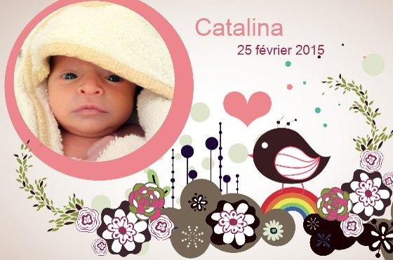 joyeux anniversaire Catalina Faire-10