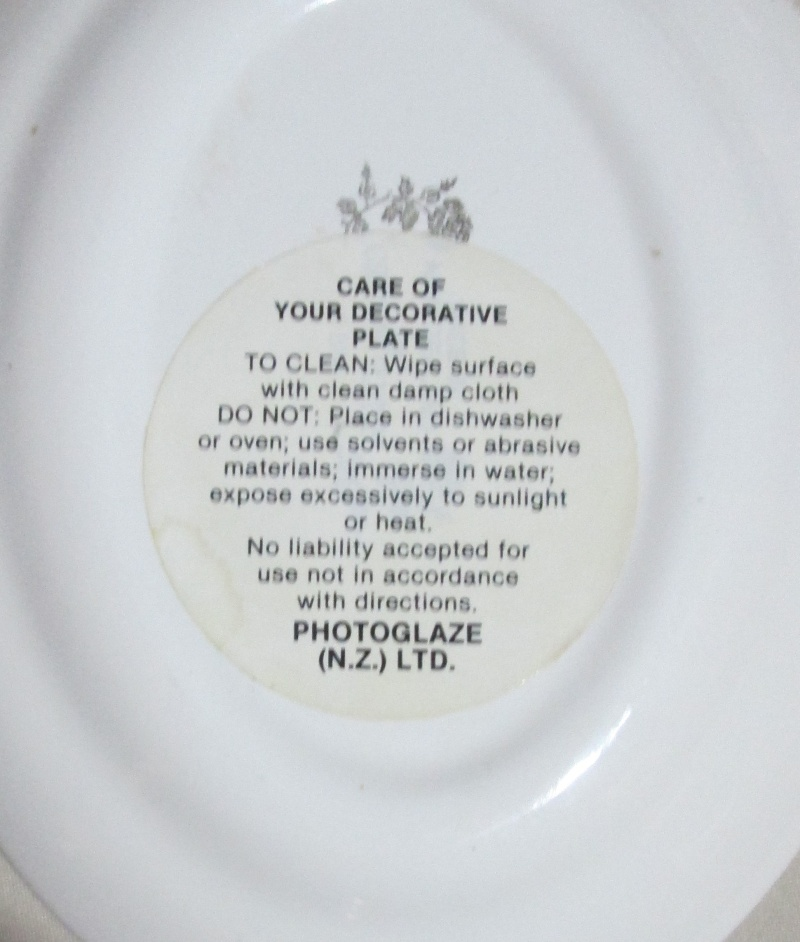 plate - A little treasure picked up today D834 Photo Frame Img_2720