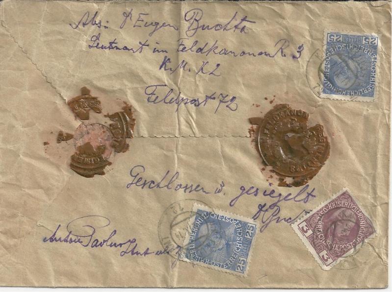 1914 - 1918   Der Untergang der K.u.K. Monarchie - Seite 3 Bild_251