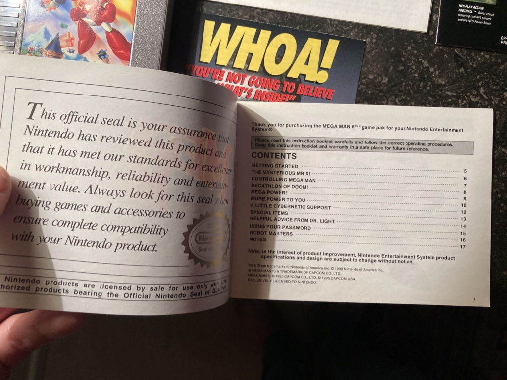 (HELP) FAUX OU VRAI MEGAMAN VI NES - Page 2 Img_1216