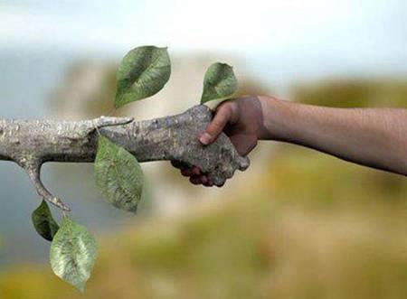Comment entrer en communion avec les arbres ! Technique de connexion Arbre-10