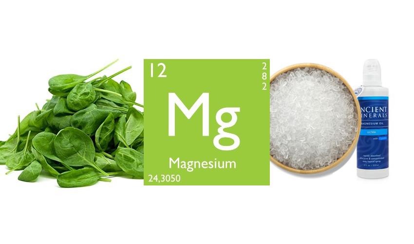 Le Magnésium, le mal aimé de la médecine Magnes12