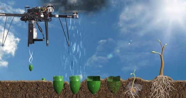 La reforestation du Médoc avec des drones ? Scénario de science fiction ? Drones10