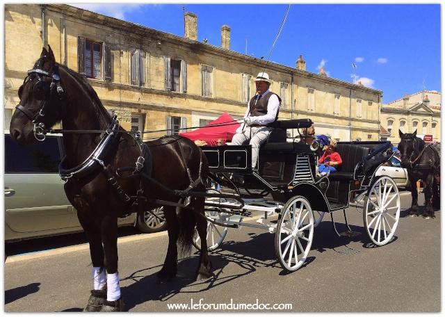 Fête de l'Agneau le 24 Mai 2015 à Pauillac vu par Forum du Médoc Img_6413